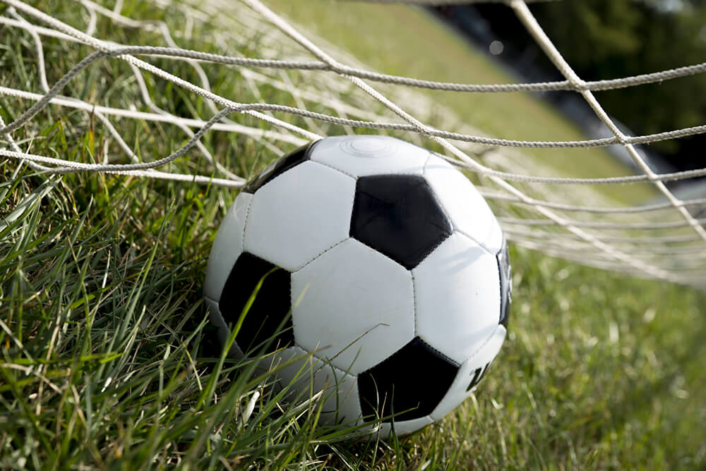 Soccer Ball in Grass